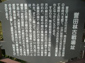 P5030045.JPG
